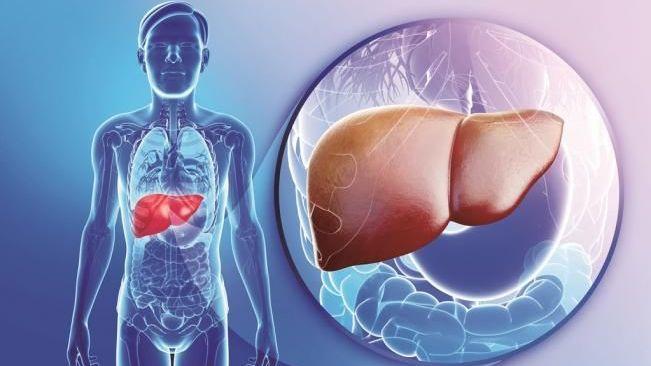 Hepatitis-Autoinmune-7