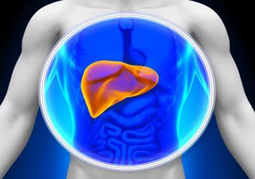 Hepatitis-Autoinmune-8